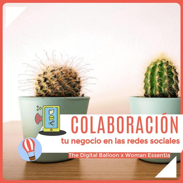 colaboración WE tu negocio en redes sociales 01